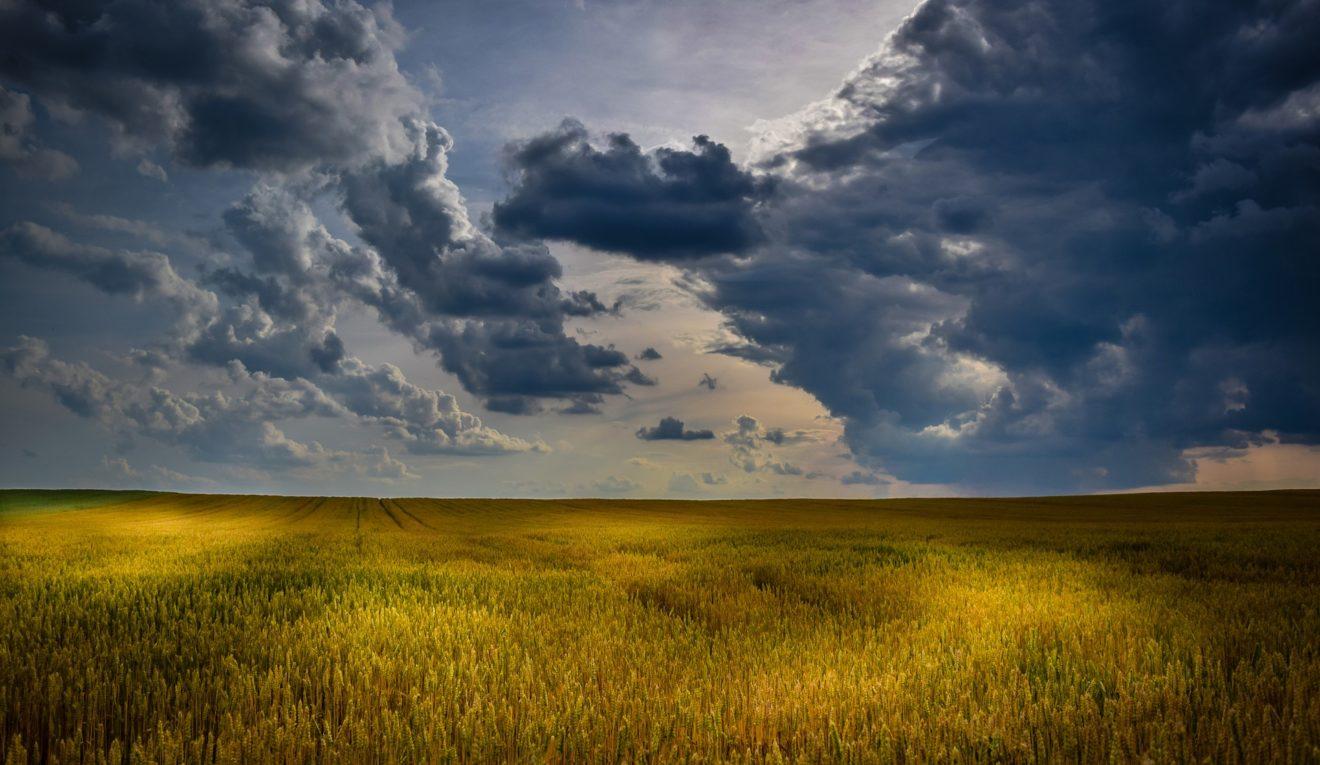 campo_nuvolo